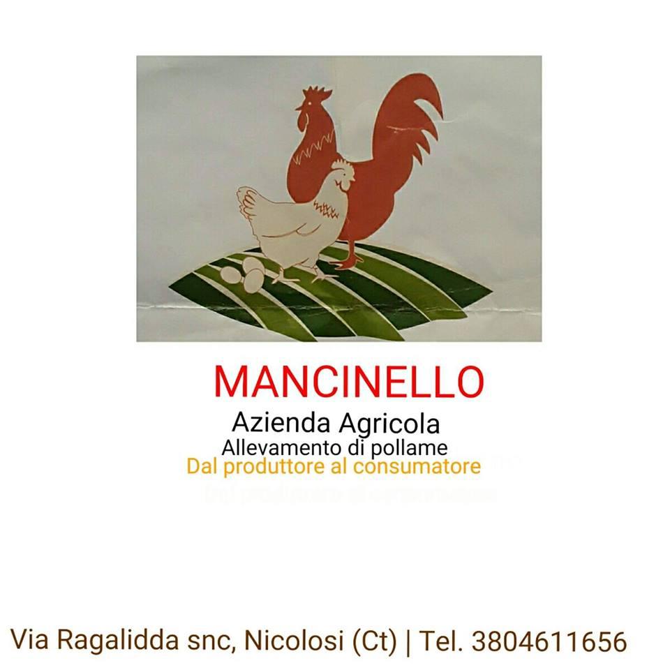 Azienda Agricola Mancinello